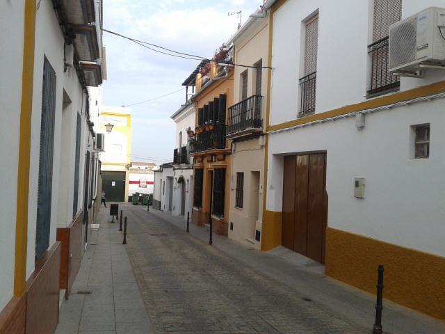 Piso Sevilla, Pilas C. CARMEN TORRES, 6, PILAS