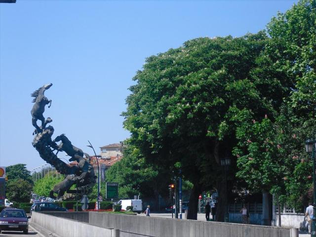 Local Pontevedra, Vigo c. pizarro, 7, vigo
