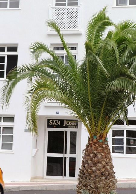 Locals Sta. Cruz Tenerife, Tamaimo (santiago Del Teide) av. general a puerto 454, 20, tamaimo (santiago del teide)