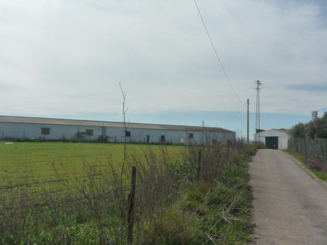 Industrial premises Sevilla, Pedrera spot la romera, s/n, pedrera