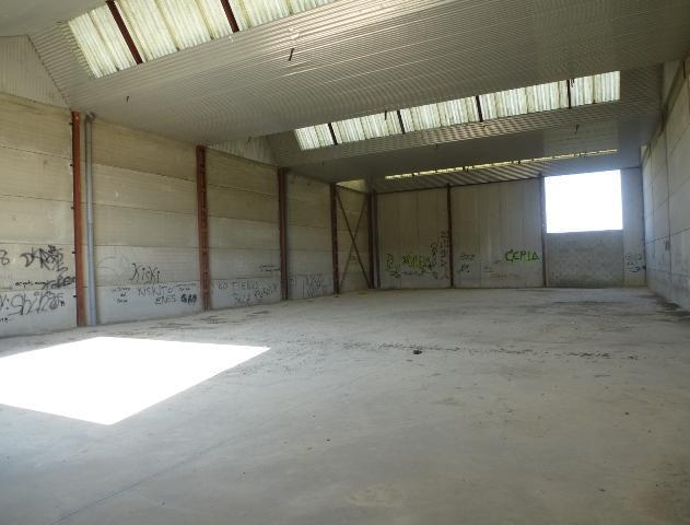 Industrial premises Cádiz, Guadalcacin avenue ave numismatica, pol. ciudad del transporte s33-m25 mo, guadalcacin